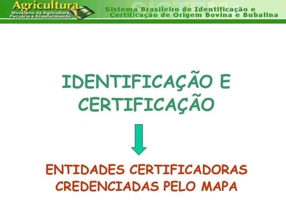 IDENTIFICAÇÃO E CERTIFICAÇÃO ENTIDADES CERTIFICADORAS CREDENCIADAS PELO MAPA
