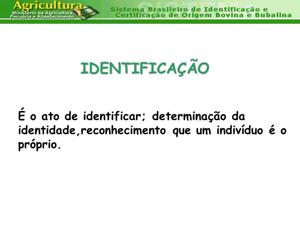CERTIFICAÇÃO garantia de sanidade, qualidade e segurança alimentar.