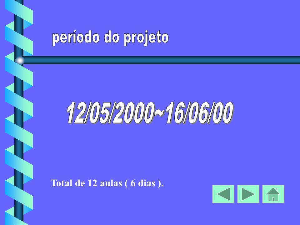 Total de 12 aulas ( 6 dias ).