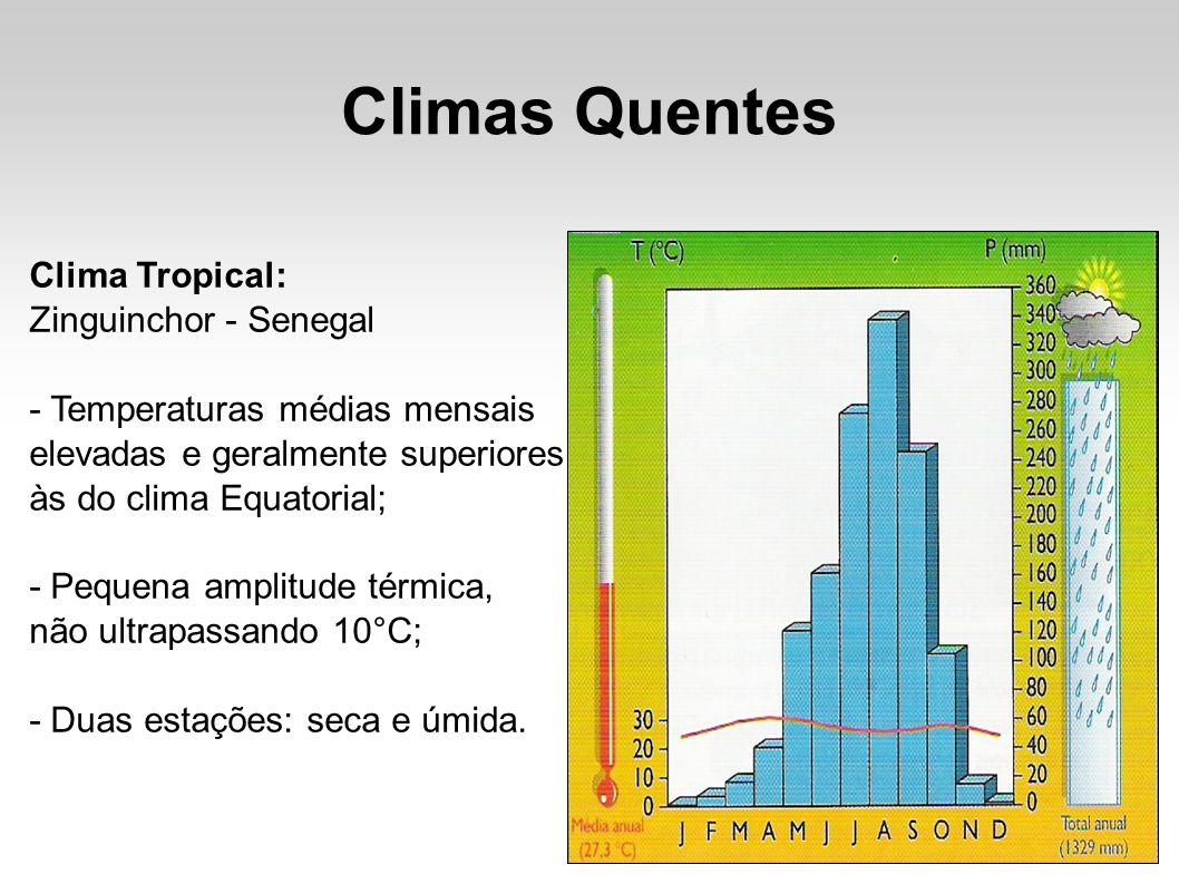 Climas Quentes Clima Tropical: Zinguinchor - Senegal - Temperaturas médias mensais elevadas e geralmente superiores às do clima Equatorial; - Pequena