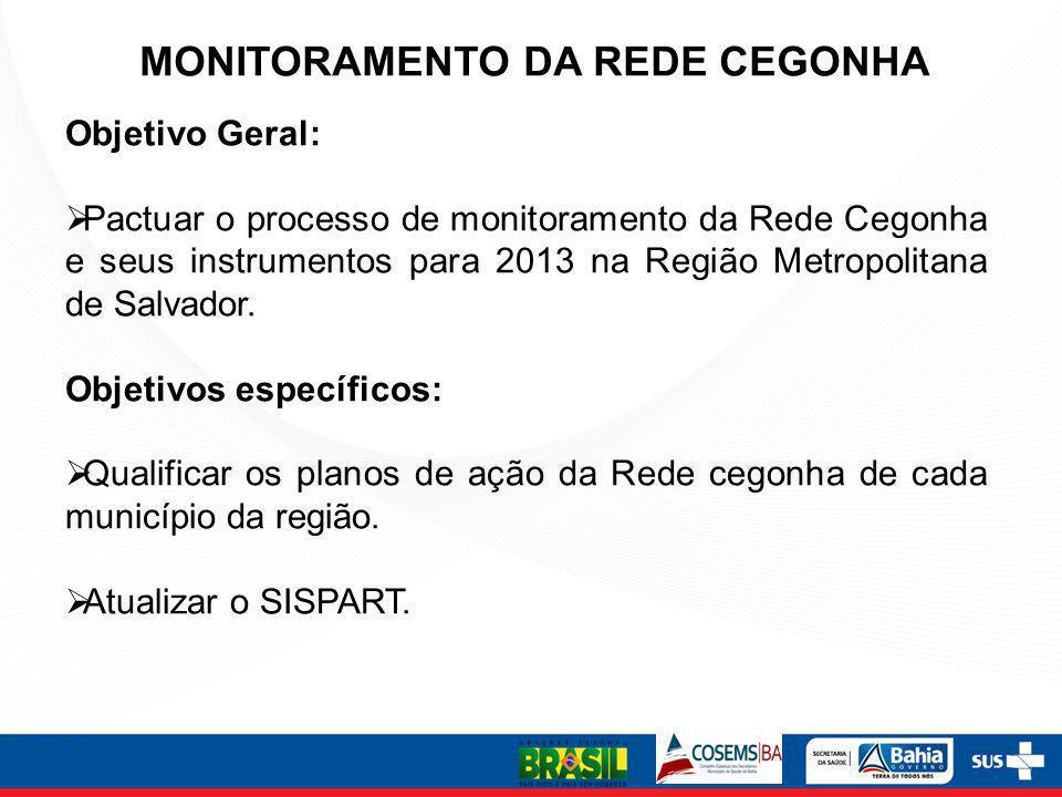 MONITORAMENTO DA REDE CEGONHA Objetivo Geral: Pactuar o processo de monitoramento da Rede Cegonha e seus instrumentos para 2013 na Região Metropolitan
