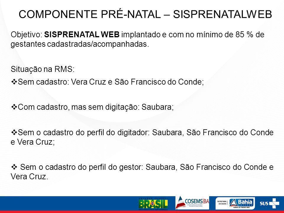 COMPONENTE PRÉ-NATAL – SISPRENATALWEB Objetivo: SISPRENATAL WEB implantado e com no mínimo de 85 % de gestantes cadastradas/acompanhadas. Situação na