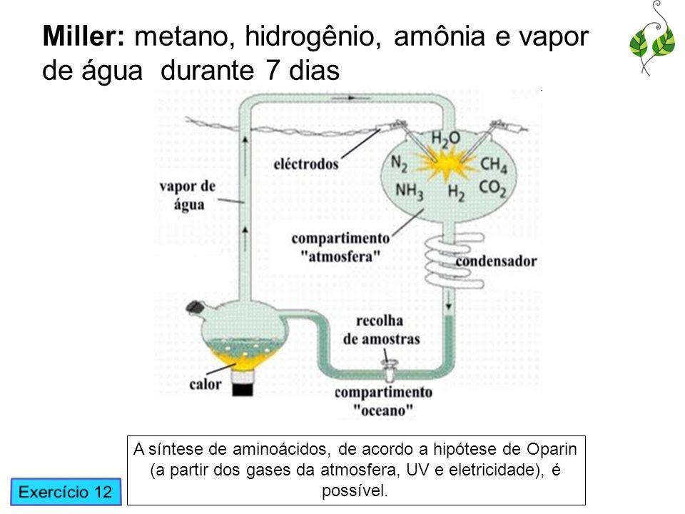 Miller: metano, hidrogênio, amônia e vapor de água durante 7 dias A síntese de aminoácidos, de acordo a hipótese de Oparin (a partir dos gases da atmo
