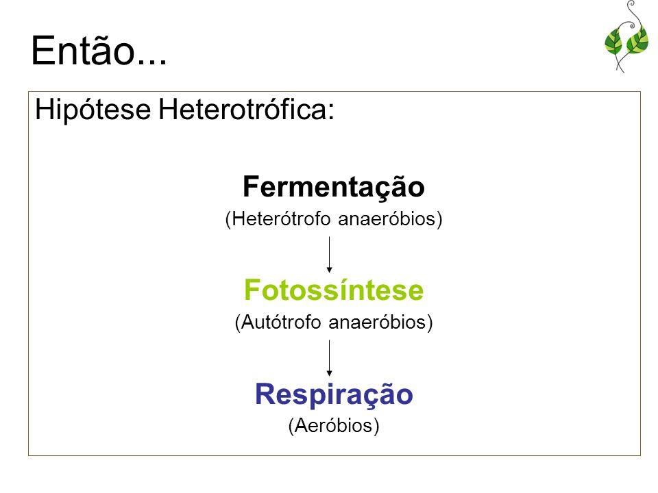 Então... Hipótese Heterotrófica: Fermentação (Heterótrofo anaeróbios) Fotossíntese (Autótrofo anaeróbios) Respiração (Aeróbios)