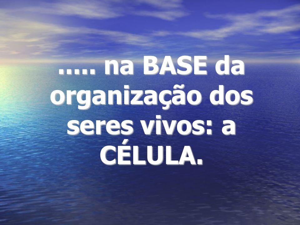 ..... na BASE da organização dos seres vivos: a CÉLULA.