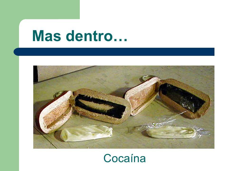 Mas dentro… Cocaína