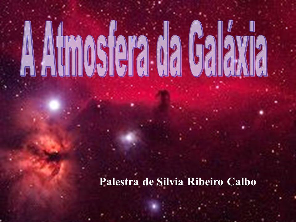 Palestra de Silvia Ribeiro Calbo
