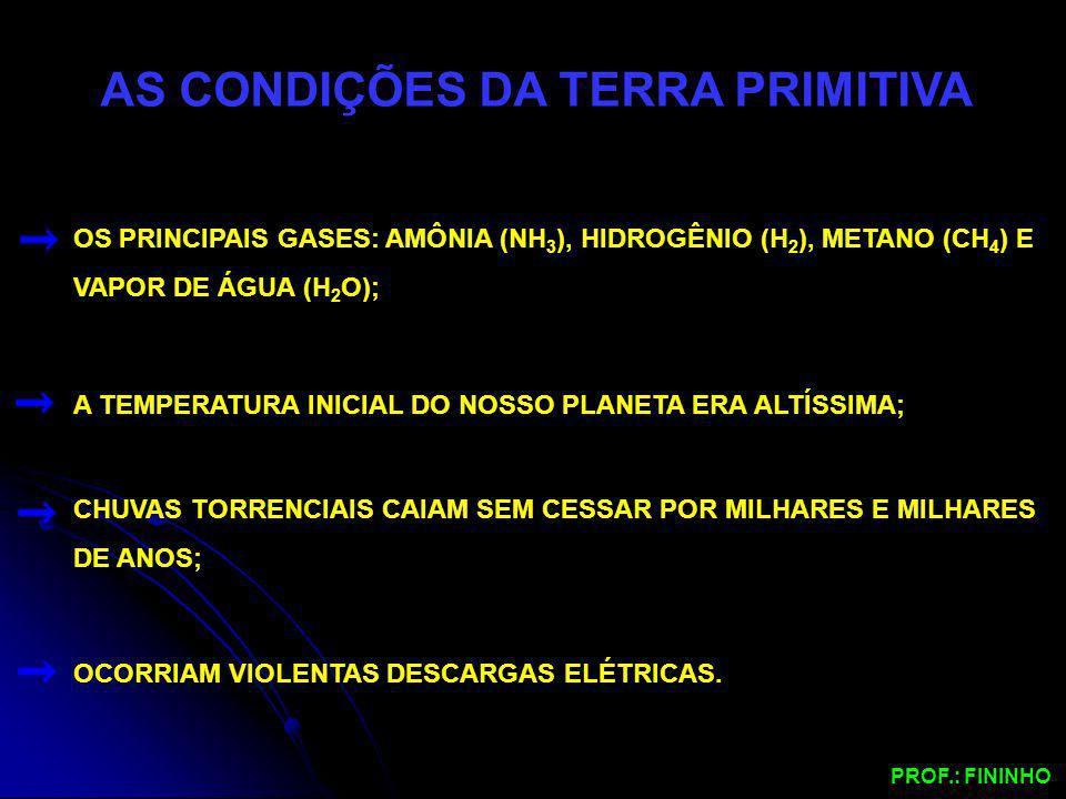 AS CONDIÇÕES DA TERRA PRIMITIVA OS PRINCIPAIS GASES: AMÔNIA (NH 3 ), HIDROGÊNIO (H 2 ), METANO (CH 4 ) E VAPOR DE ÁGUA (H 2 O); A TEMPERATURA INICIAL