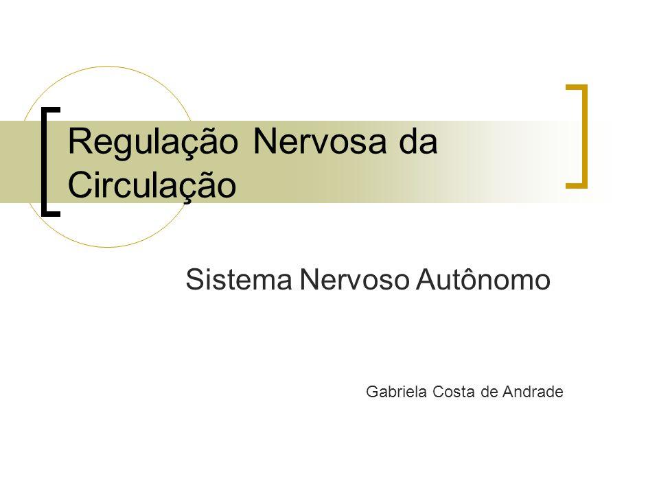 Regulação Nervosa da Circulação Sistema Nervoso Autônomo Gabriela Costa de Andrade