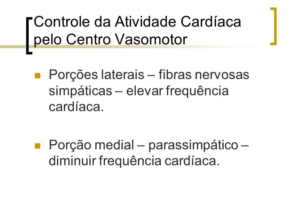 Controle da Atividade Cardíaca pelo Centro Vasomotor Porções laterais – fibras nervosas simpáticas – elevar frequência cardíaca. Porção medial – paras