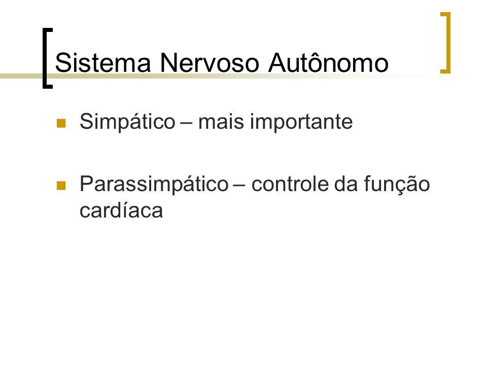 Sistema Nervoso Autônomo Simpático – mais importante Parassimpático – controle da função cardíaca