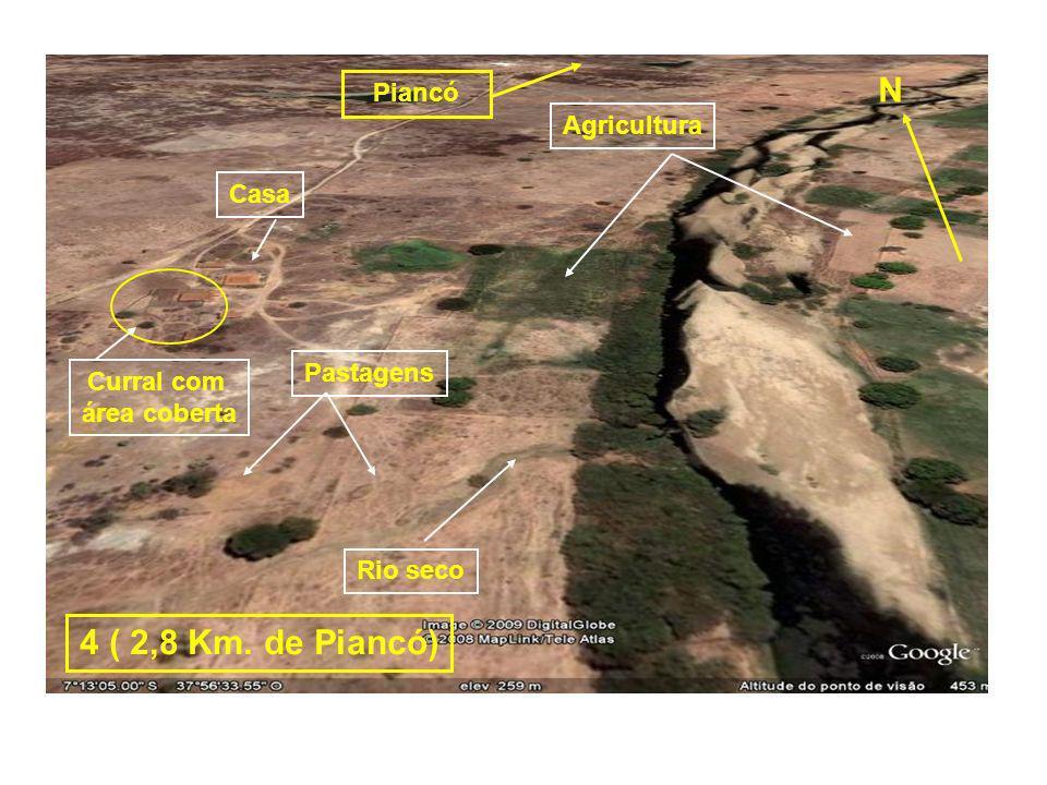 Grupo Escolar Carvalhadas Margens do Rio Piancó Margem esquerda - terra alta Margem direita – terra baixa Agricultura Pastagens 5 (1,7 Km.