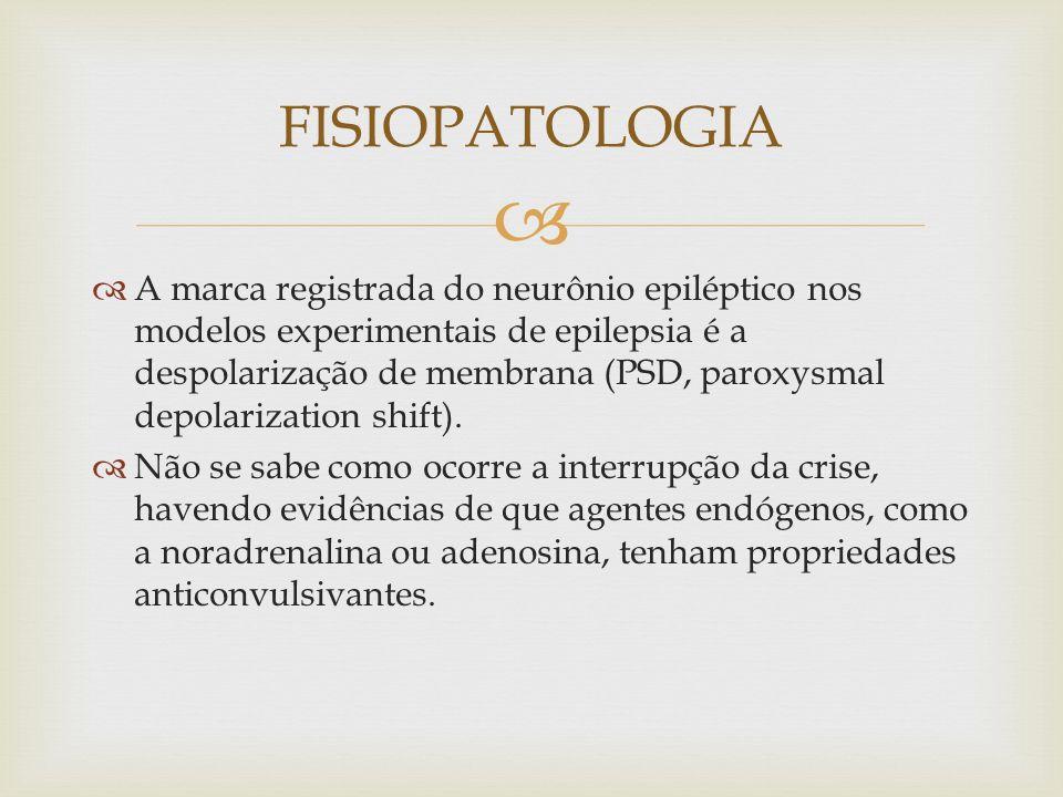 A marca registrada do neurônio epiléptico nos modelos experimentais de epilepsia é a despolarização de membrana (PSD, paroxysmal depolarization shift).
