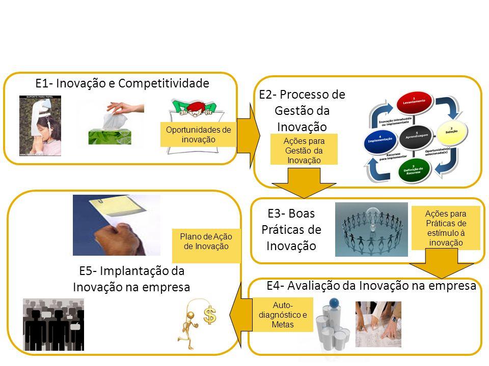 Esforços Fontes de informação Obstáculos Resultados obtidos Arranjos cooperativos Avaliação da Empresa S3E4 www.pintec.ibge.gov.br