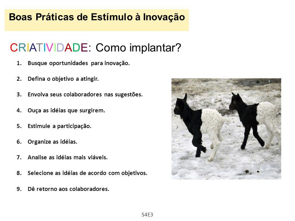 Boas Práticas de Estímulo à Inovação CRIATIVIDADE: Como implantar? 1.Busque oportunidades para inovação. 2.Defina o objetivo a atingir. 3.Envolva seus