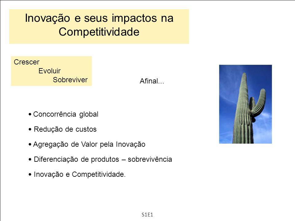 Indicadores de inovação Indicadores - Esforços Indicadores - Resultados Processo de GI Estímulos à inovação + S4E4