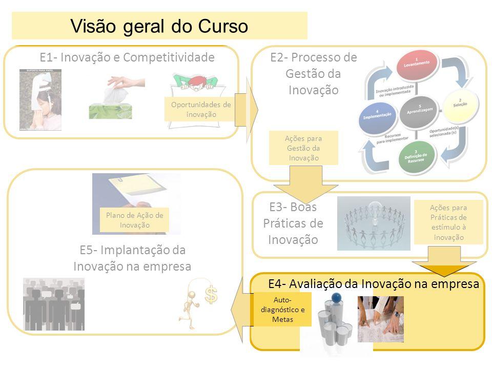 E1- Inovação e Competitividade Oportunidades de inovação E2- Processo de Gestão da Inovação Ações para Gestão da Inovação E3- Boas Práticas de Inovaçã