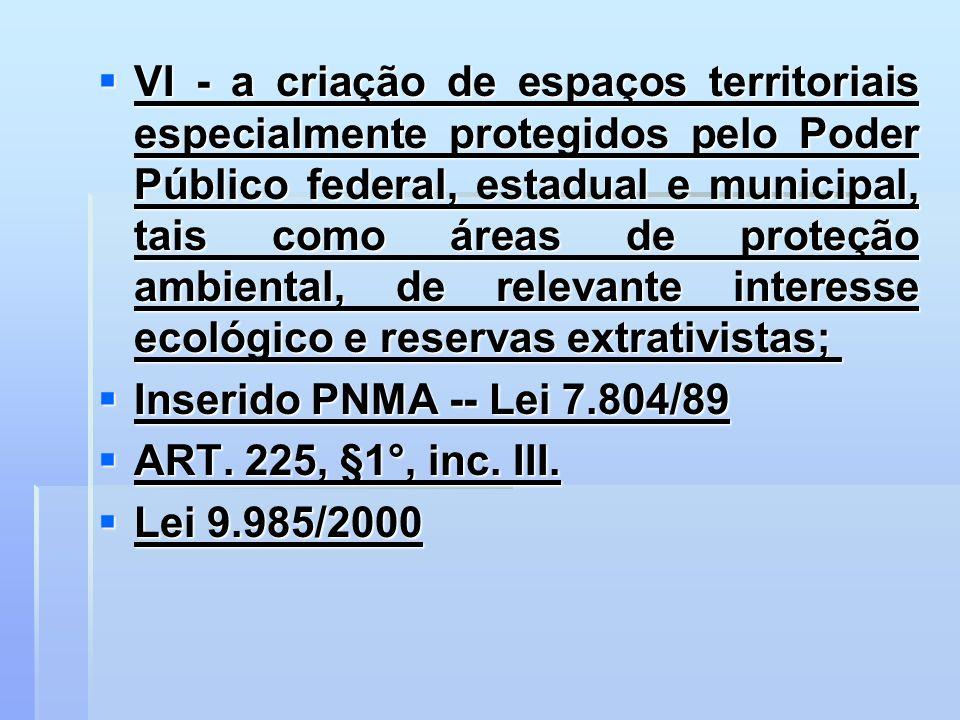 VI - a criação de espaços territoriais especialmente protegidos pelo Poder Público federal, estadual e municipal, tais como áreas de proteção ambienta