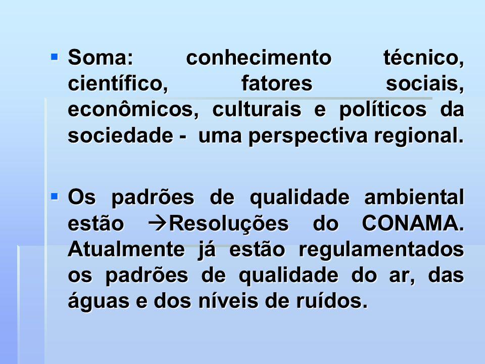 Soma: conhecimento técnico, científico, fatores sociais, econômicos, culturais e políticos da sociedade - uma perspectiva regional. Soma: conhecimento