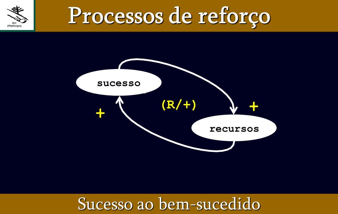 sucesso (R/+)+ + recursos Sucesso ao bem-sucedido Processos de reforço