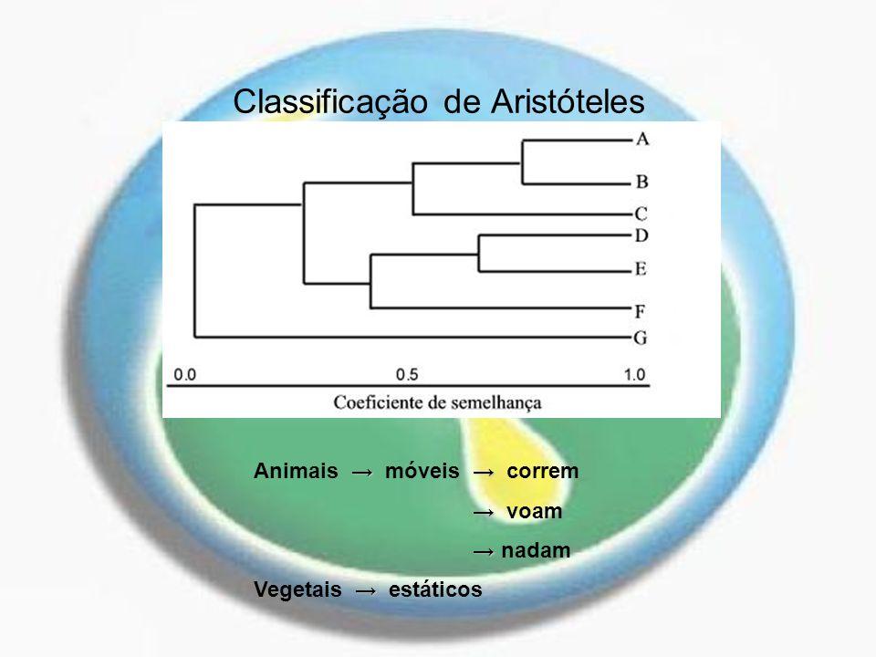 Classificação de Aristóteles Animais móveis correm voam nadam Vegetais estáticos