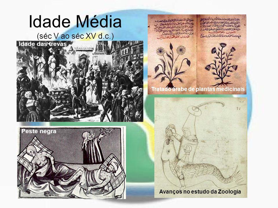 Idade Média (séc V ao séc XV d.c.) Tratado árabe de plantas medicinais Idade das trevas Peste negra Avanços no estudo da Zoologia