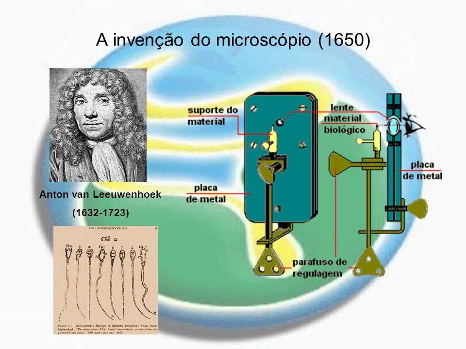 A invenção do microscópio (1650) Anton van Leeuwenhoek (1632-1723)