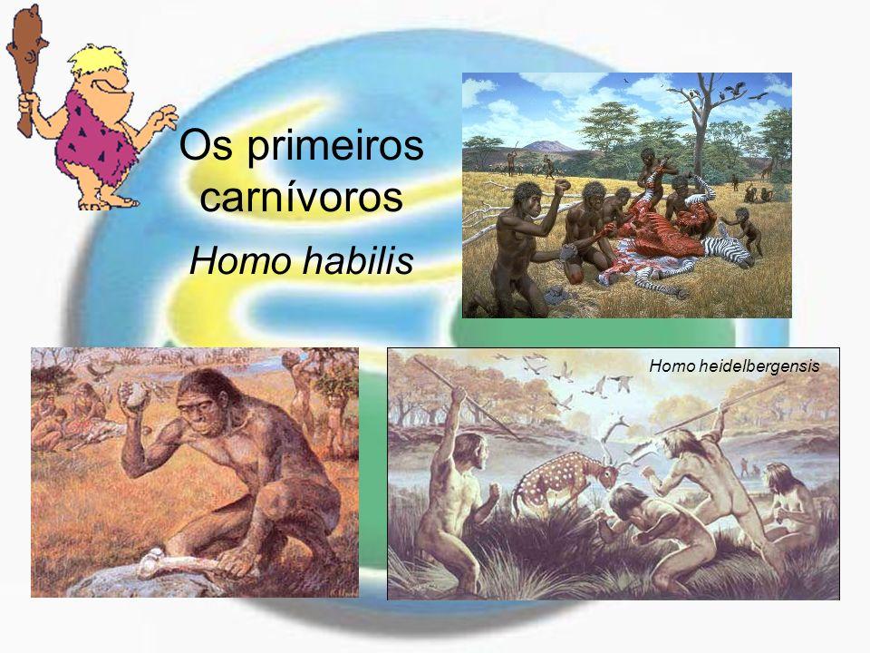 O manipulador do fogo Homo erectus