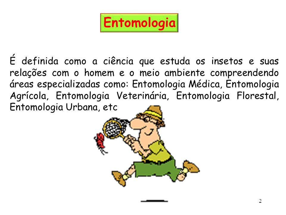 É definida como a ciência que estuda os insetos e suas relações com o homem e o meio ambiente compreendendo áreas especializadas como: Entomologia Méd