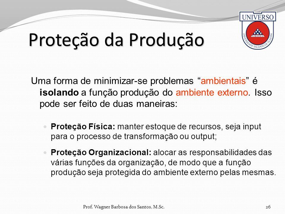 Proteção da Produção Uma forma de minimizar-se problemas ambientais é isolando a função produção do ambiente externo. Isso pode ser feito de duas mane