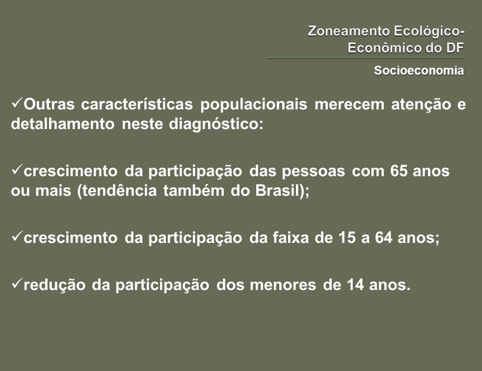 Socioeconomia Outras características populacionais merecem atenção e detalhamento neste diagnóstico: crescimento da participação das pessoas com 65 an