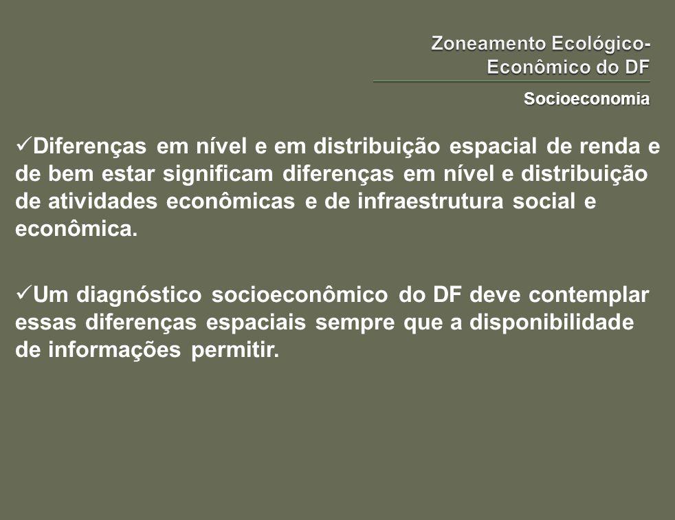 Socioeconomia Diferenças em nível e em distribuição espacial de renda e de bem estar significam diferenças em nível e distribuição de atividades econô