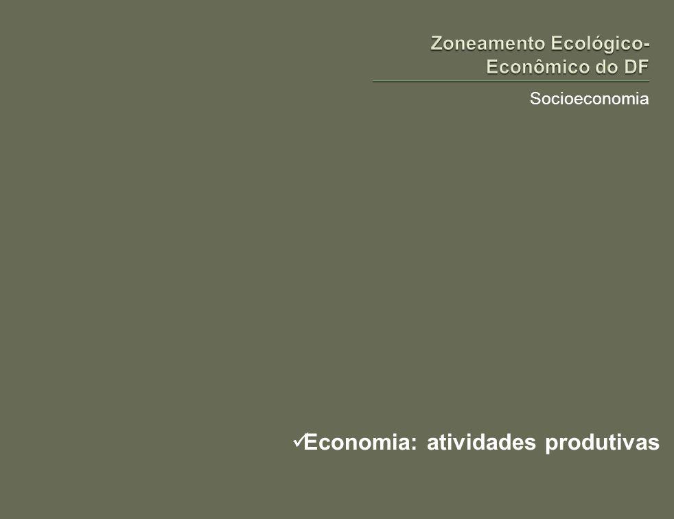 Socioeconomia Economia: atividades produtivas