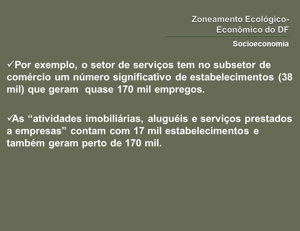 Socioeconomia Por exemplo, o setor de serviços tem no subsetor de comércio um número significativo de estabelecimentos (38 mil) que geram quase 170 mi