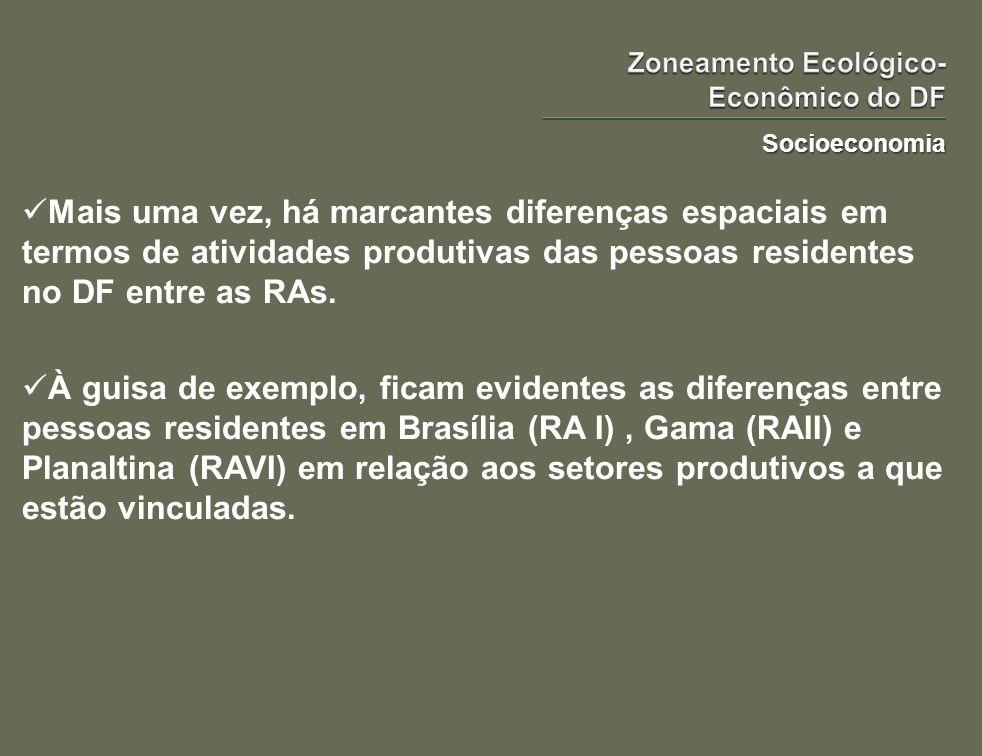 Socioeconomia Mais uma vez, há marcantes diferenças espaciais em termos de atividades produtivas das pessoas residentes no DF entre as RAs. À guisa de