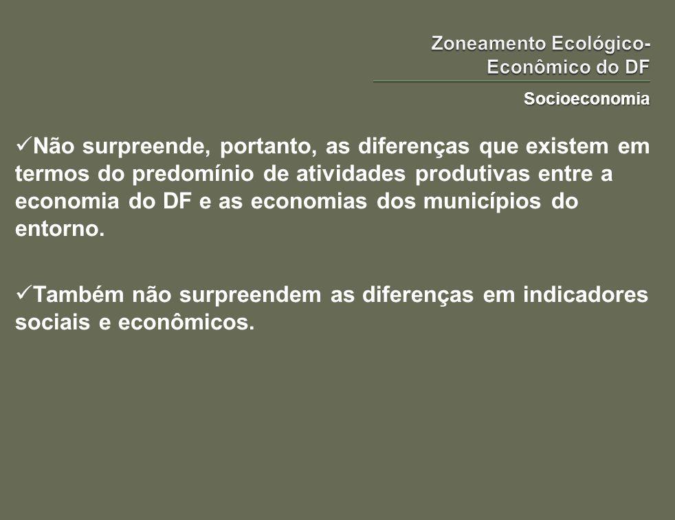 Socioeconomia Não surpreende, portanto, as diferenças que existem em termos do predomínio de atividades produtivas entre a economia do DF e as economi