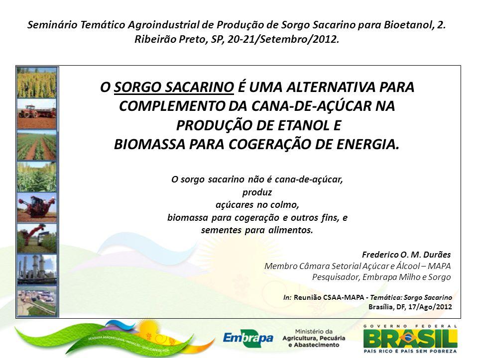 O SORGO SACARINO É UMA ALTERNATIVA PARA COMPLEMENTO DA CANA-DE-AÇÚCAR NA PRODUÇÃO DE ETANOL E BIOMASSA PARA COGERAÇÃO DE ENERGIA. O sorgo sacarino não