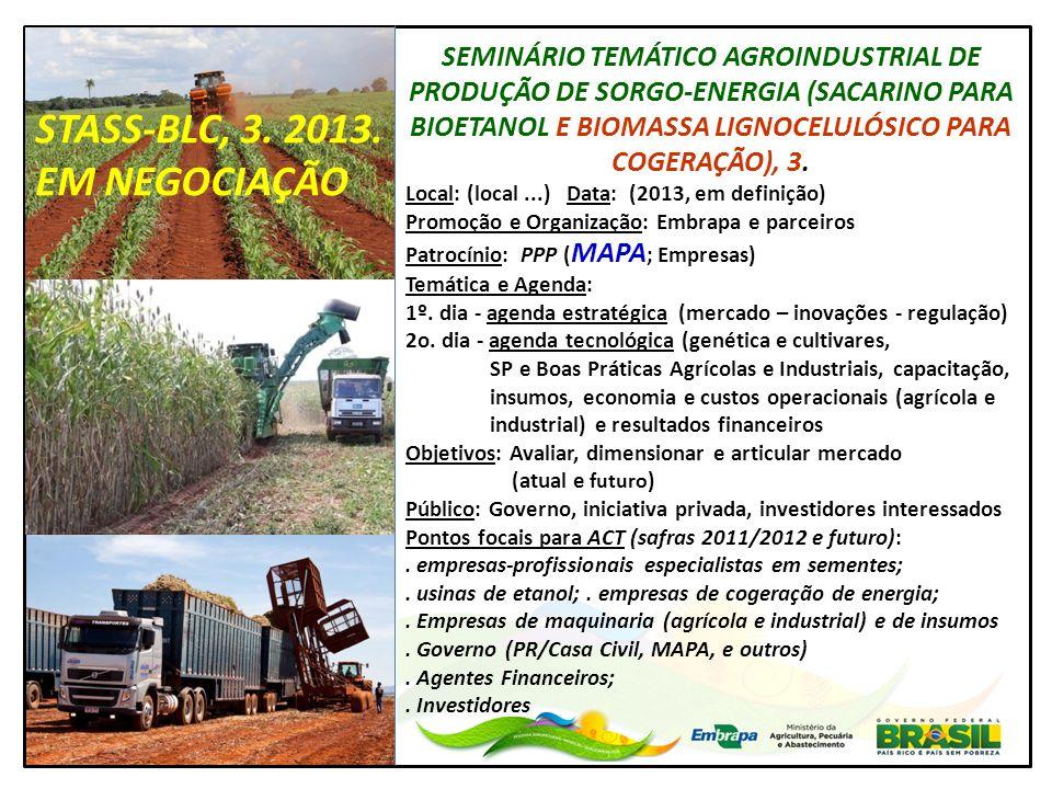 SEMINÁRIO TEMÁTICO AGROINDUSTRIAL DE PRODUÇÃO DE SORGO-ENERGIA (SACARINO PARA BIOETANOL E BIOMASSA LIGNOCELULÓSICO PARA COGERAÇÃO), 3. Local: (local..