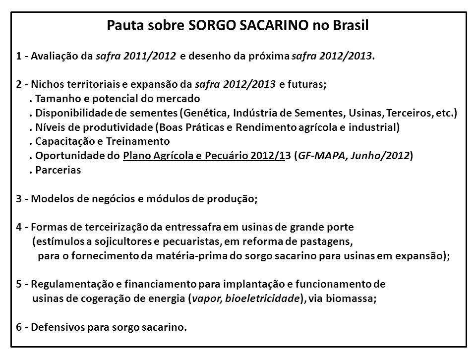 Pauta sobre SORGO SACARINO no Brasil 1 - Avaliação da safra 2011/2012 e desenho da próxima safra 2012/2013. 2 - Nichos territoriais e expansão da safr