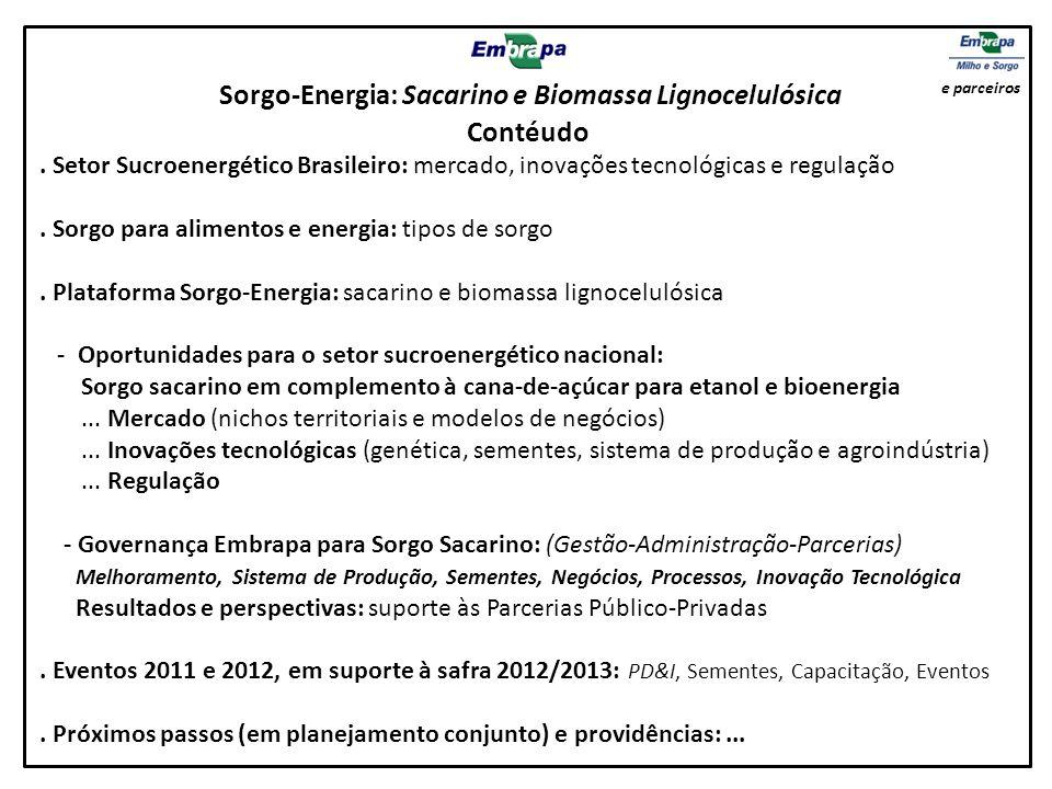 Sorgo-Energia: Sacarino e Biomassa Lignocelulósica Contéudo. Setor Sucroenergético Brasileiro: mercado, inovações tecnológicas e regulação. Sorgo para