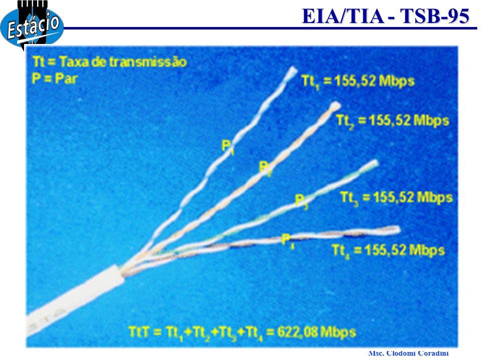 Msc. Clodomi Coradini EIA/TIA - TSB-95