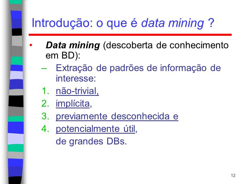 12 Introdução: o que é data mining ? Data mining (descoberta de conhecimento em BD): –Extração de padrões de informação de interesse: 1.não-trivial, 2