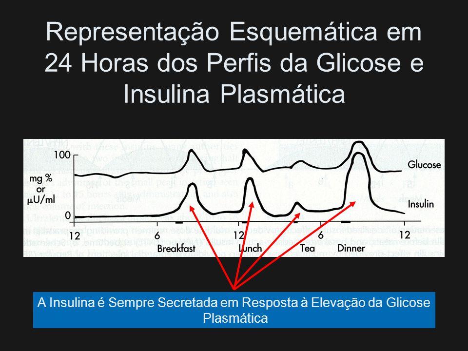 Temos Que Tentar Imitar o Que Ocorre numa Pessoa Normal Sem Diabetes e Com Isso Procurar Manter os Níveis Glicêmicos Mais Próximos do Normal