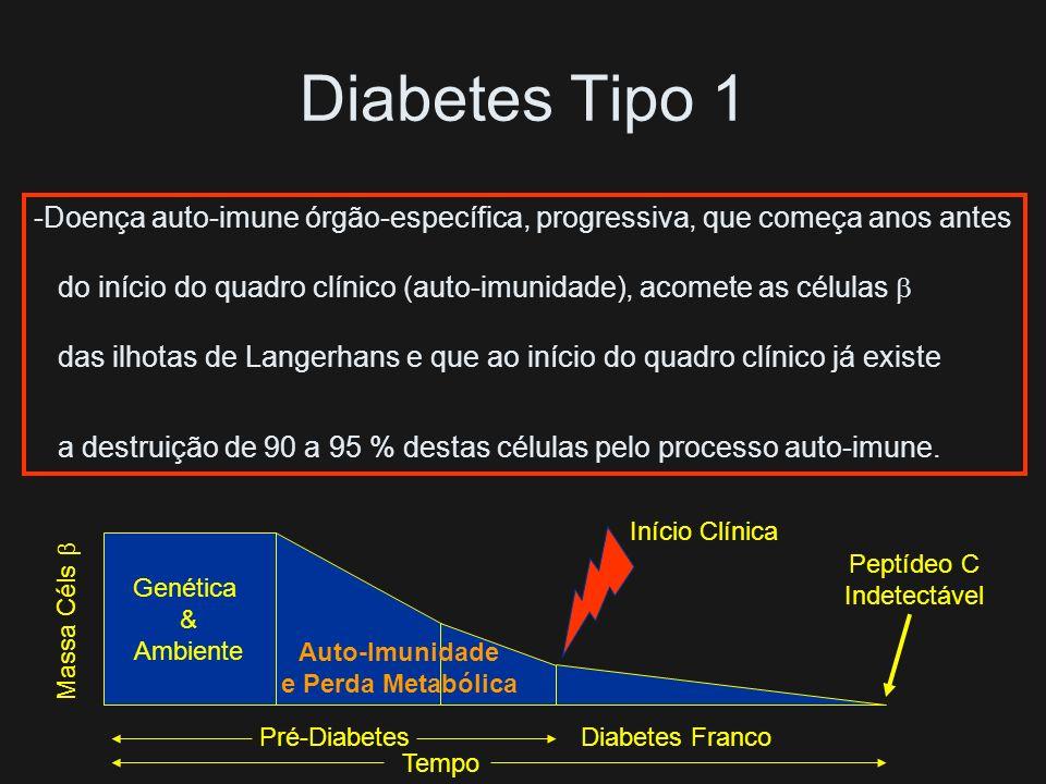 Diabetes do Tipo 1 99 % - Auto-Imune (1 A) 1 % - Idiopática (1 B) A Incidência Vem Aumentando em Todo o Mundo Início Abrupto: Poliúria Polifagia Polid