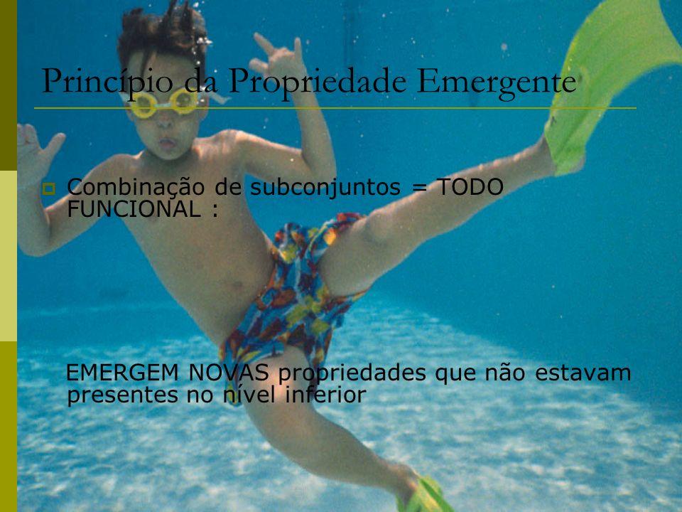 Princípio da Propriedade Emergente Combinação de subconjuntos = TODO FUNCIONAL : EMERGEM NOVAS propriedades que não estavam presentes no nível inferio