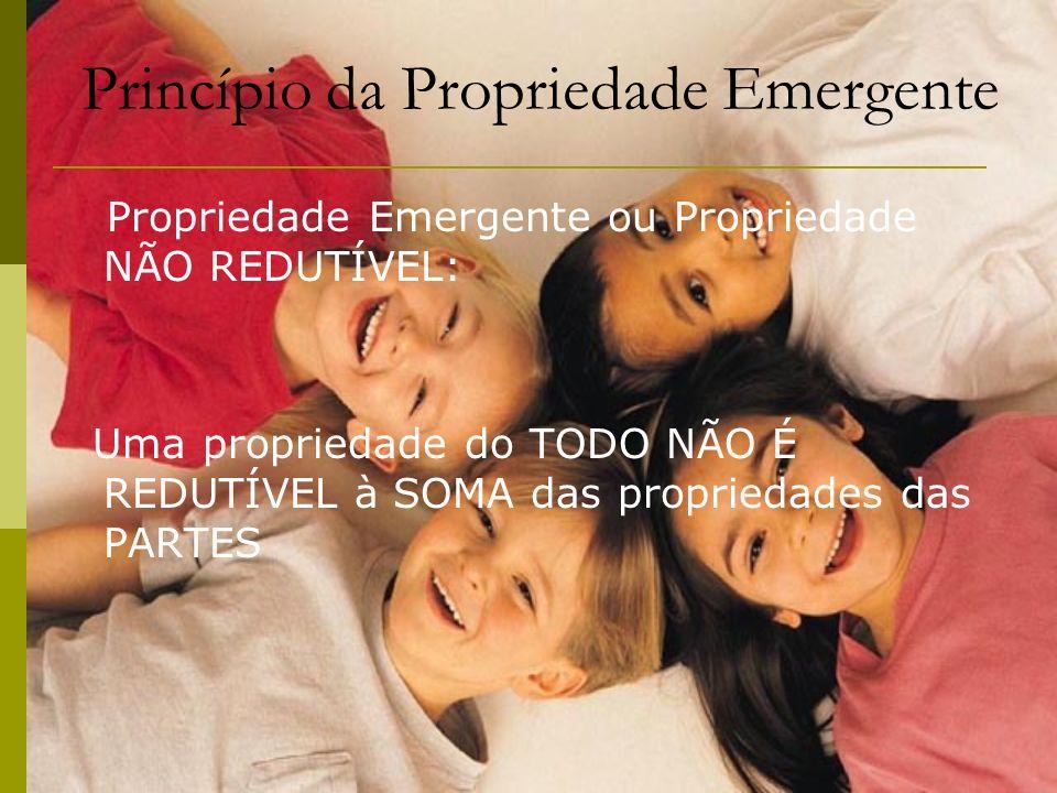 Princípio da Propriedade Emergente Propriedade Emergente ou Propriedade NÃO REDUTÍVEL: Uma propriedade do TODO NÃO É REDUTÍVEL à SOMA das propriedades