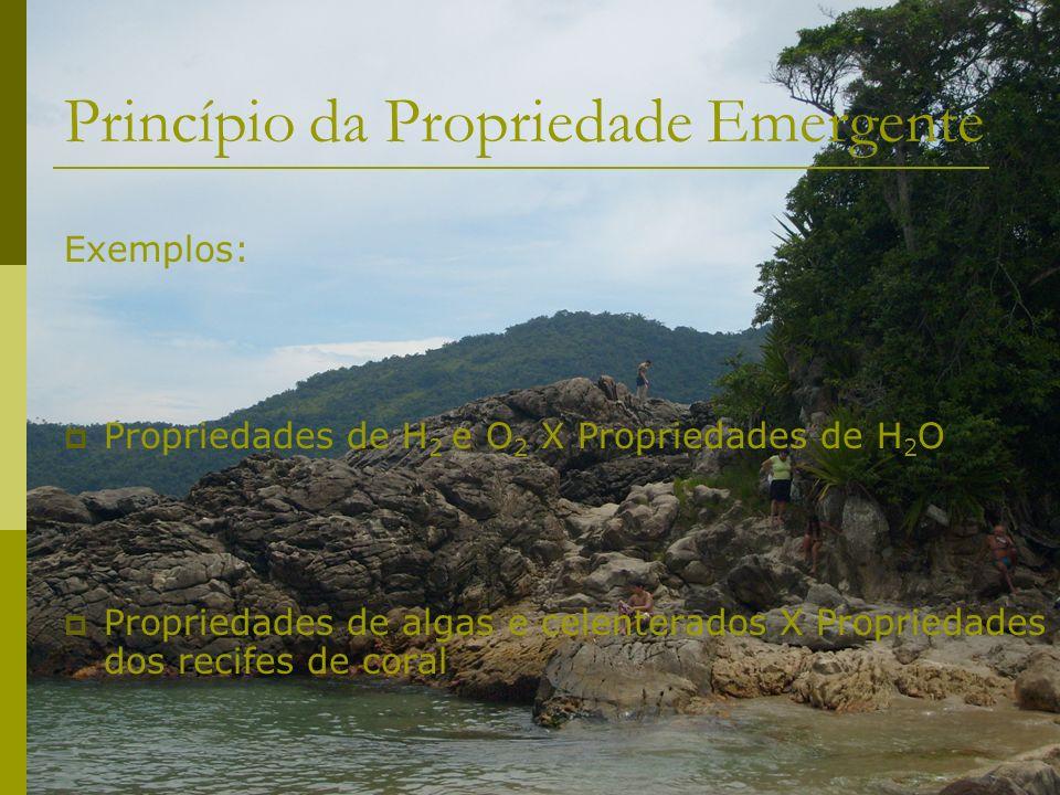 Princípio da Propriedade Emergente Exemplos: Propriedades de H 2 e O 2 X Propriedades de H 2 O Propriedades de algas e celenterados X Propriedades dos