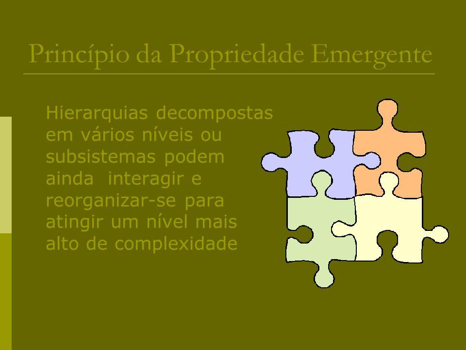 Princípio da Propriedade Emergente Hierarquias decompostas em vários níveis ou subsistemas podem ainda interagir e reorganizar-se para atingir um níve