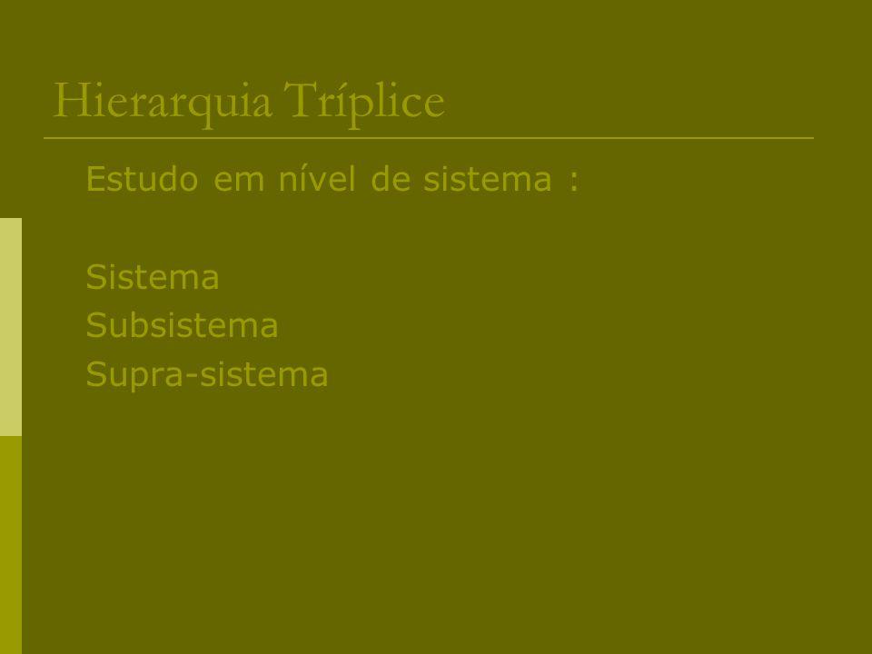 Hierarquia Tríplice Estudo em nível de sistema : Sistema Subsistema Supra-sistema