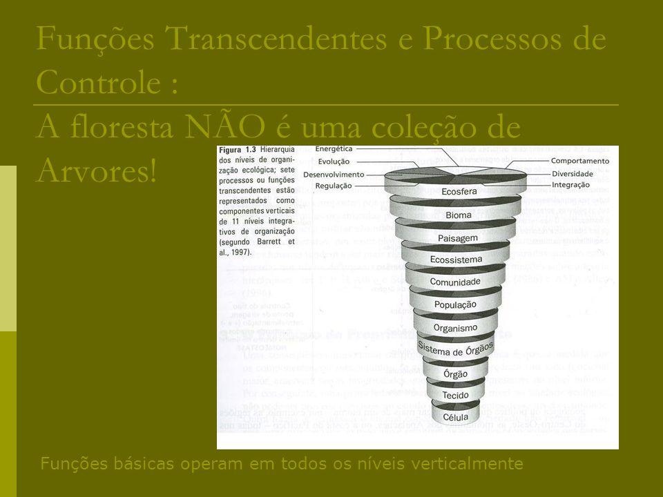 Funções Transcendentes e Processos de Controle : A floresta NÃO é uma coleção de Arvores! Funções básicas operam em todos os níveis verticalmente